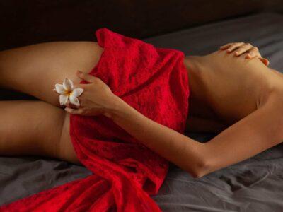 Red Blanket With Flower Desktop